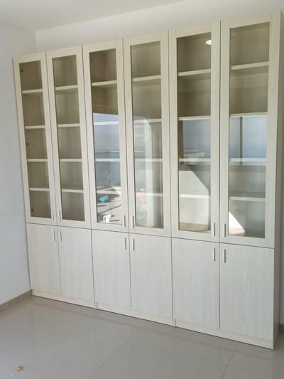 ארון ספרים עם דלתות